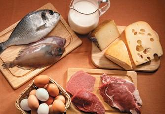 Dietas – Alimentos que ajudam a Emagrecer